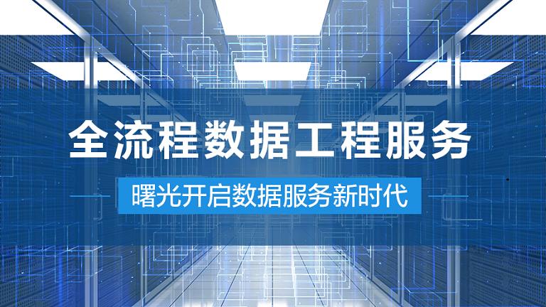 全(quan)流程數據工程服務